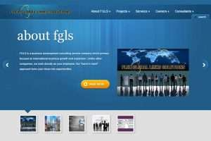 Pro Global Business Website