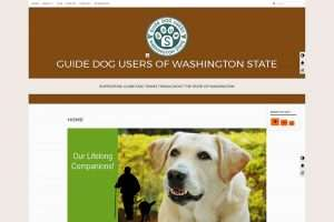 Accessible Visually Impaired Website