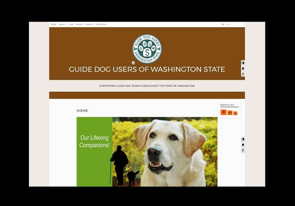 Visually Impaired Nonprofit   Organization Accessible Website