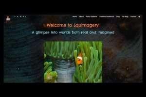 squimagery website slide