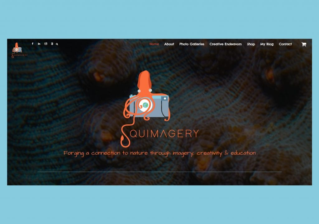 squimagery-web-for-slide